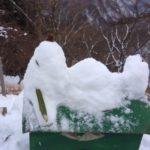 2/5(月)〜2/9(金)、小屋番お休みをいただきます